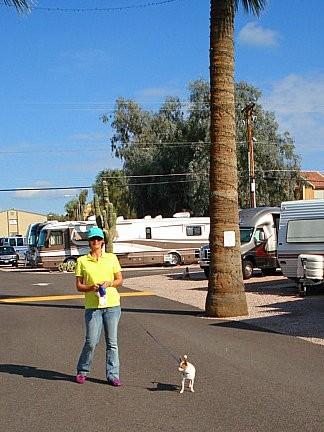 Apache Palms RV Park - Tempe, AZ - RV Parks