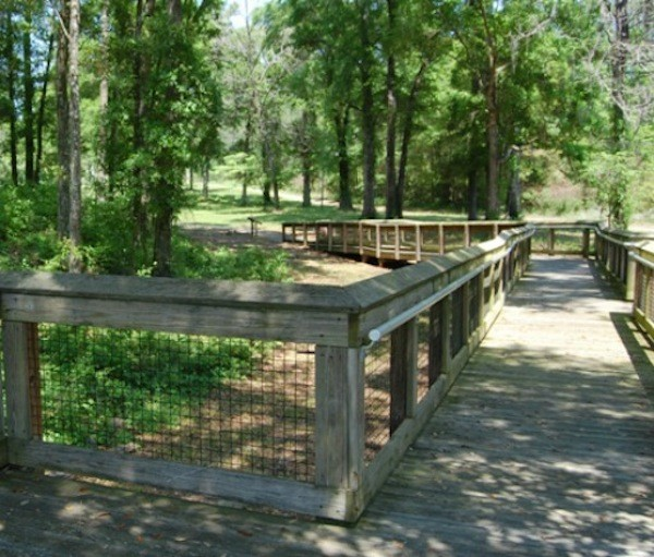 Letchworth-Love Mounds Archaeological State Park - Tallahassee, FL - Florida State Parks