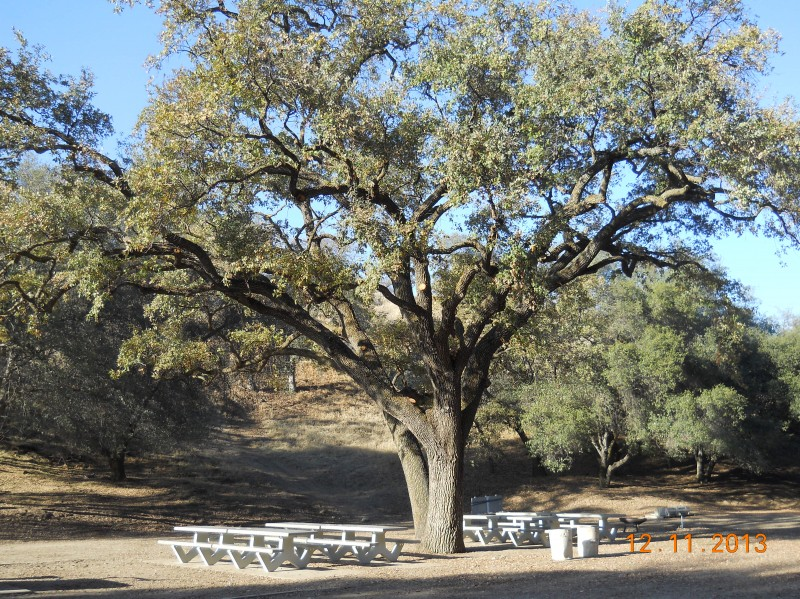 Choinumni Park - Piedra, CA - County / City Parks