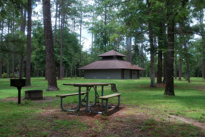 Wright Lake Campground Apalachicola National Forest