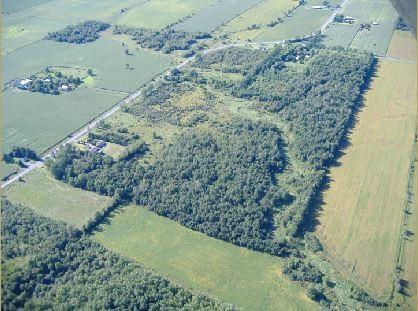 Maplewood Acres RV Resort