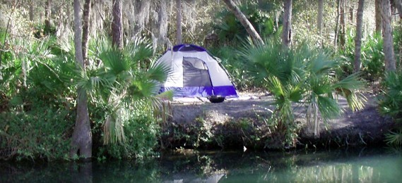 Wekiva Falls RV Resort - Sorrento, FL - RV Parks