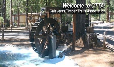 Calaveras Timber Trails Park Avery Ca Rv Parks