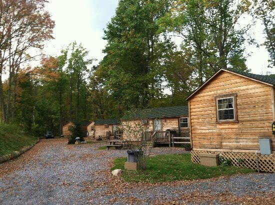 Twin Grove Park & Campground   - Pine Grove, PA - RV Parks