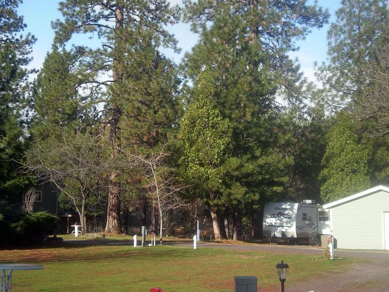 Trailer Lane Rv Park - Weed, CA - RV Parks