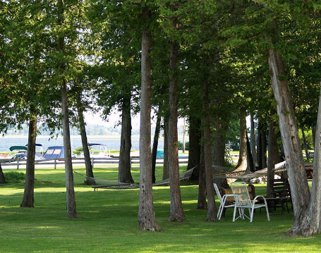 Lonesome Pine Cottage & RV Resort - Bobcaygeon, ON - RV Parks