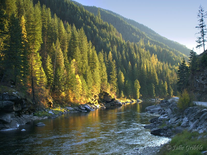 O'Hara Bar Campground Clearwater National Forest - Kooskia  , ID - National Parks