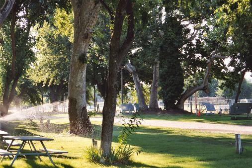 Hidden Harbor Marina and Rv Park - Los Molinos, CA - RV Parks