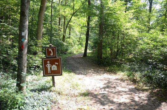 Stephens State Park - Hackettstown, NJ - New Jersey State Parks