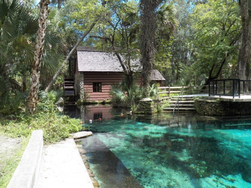Ocala National Forest Silver Springs Fl National
