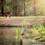 General Coffee State Park - Nicholls, GA - Georgia State Parks
