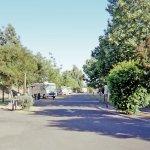 Dos Reis Regional Park - Lathrop, CA - County / City Parks