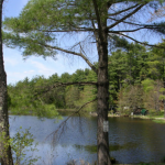 Peaceful Pines Family Campground - Templeton, MA - RV Parks