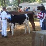 Eaton County Fairgrounds - Charlotte, MI - County / City Parks