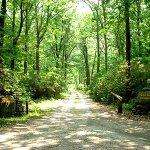 Mashamoquet Brook State Park - Pomfret Center, CT - Connecticut State Parks