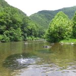 Big Bend Campground - Upper Tract, WV - National Parks