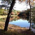 Aiken State Park - Windsor, SC - South Carolina State Parks