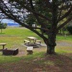 Vista Park - Skamokawa, WA - RV Parks