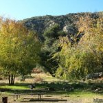 Coldbrook Campground Angeles National Forest  - Arcadia, CA - National Parks