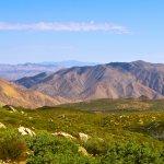 South Carrizo Creek - Julian, CA - Free Camping