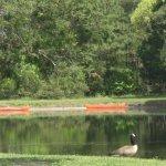 Virginia Landing RV Campground - Quinby, VA - Thousand Trails Resorts