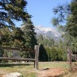 Idyllwild County Park  - Idyllwild, CA - County / City Parks