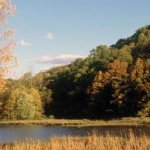 Versailles State Park - Versailles, IN - Indiana State Parks