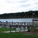 Hummingbird Cove RV Park - Rio Hondo, TX - RV Parks