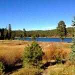 Lightner Creek Campground - Durango, CO - RV Parks