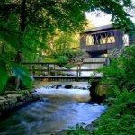 Sutton Falls Camping Area - Sutton, MA - RV Parks