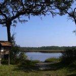 Pumpkin Hill Creek Preserve State Park - Jacksonville, FL - Florida State Parks