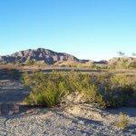 Arizona Sunset RV Park - Quartzsite, AZ - RV Parks