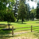 Colusa-Sacramento River State Recreation Area - Colusa, CA - RV Parks