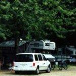 Creekside Mountain Camping - Gerton, NC - RV Parks