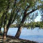 Lake Louise Campground - Byron, IL - Zeman RV Resorts