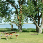 Dumont Lake Family Campground - Allegan, MI - RV Parks
