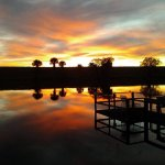 Barlows RV & Fish Camp - Okeechobee, FL - RV Parks