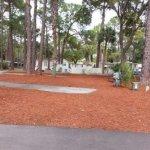 Oak Springs RV Resort - Port Richey, FL - RV Parks