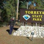 Torreya State Park - Bristol, FL - Florida State Parks