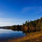 Calef Lake Camping Area - Auburn, NH - RV Parks
