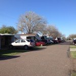 Lemon Tree RV Inn - Mission, TX - RV Parks