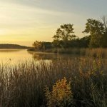 Cleburne State Park - Cleburne, TX - Texas State Parks