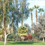 Blue Sky RV Resort - Yuma, AZ - RV Parks