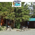 Sea Ranch RV Park - Cannon Beach, OR - RV Parks