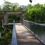 Edward Ball Wakulla Springs State Park - Wakulla Springs, FL - Florida State Parks