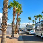 Countryside RV Resort - Apache Junction, AZ - Encore Resorts