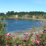 Van Damme State Park - Mendocino, CA - California State Parks