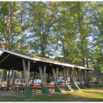 Lake Billings Campgrounds - Manton, MI - County / City Parks