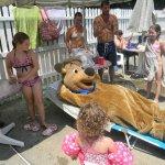 Yogi Bear Jellystone Park / Sturbridge - Worcester, MA - Yogi Bear's Jellystone
