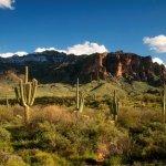 Wickiup Home Community/MHP - Apache Junction, AZ - RV Parks